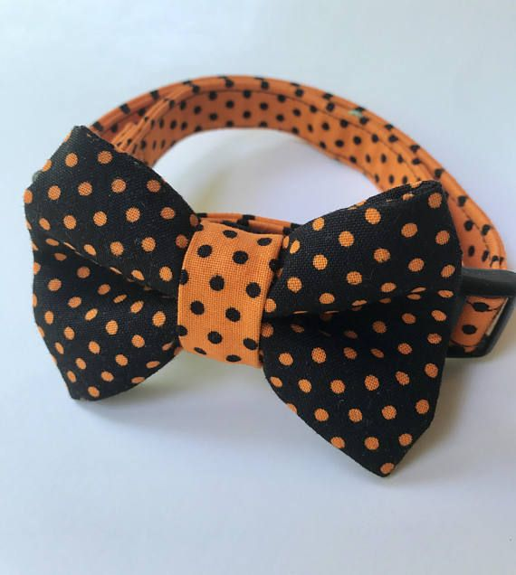 Halloween Cat Collar, Black Cat Collar, Breakaway Cat Collar, Orange Cat Collar, Kitten Collar, Collar flower or bow tie optional
