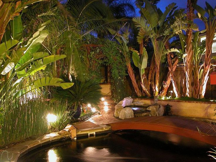 21 best koi pond images on pinterest backyard ponds for Koi pool water gardens thornton