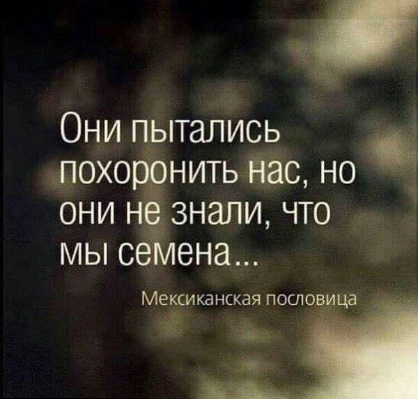 """(2) Gallery.ru / Разум - Афоризмы - Jasnaja Поговорки, афоризмы и шутки - Всегда найдется пара минут для это. <a href=""""https://www.natr-nn.ru/blog/category/entertainment"""">Еще больше постеров</a>"""