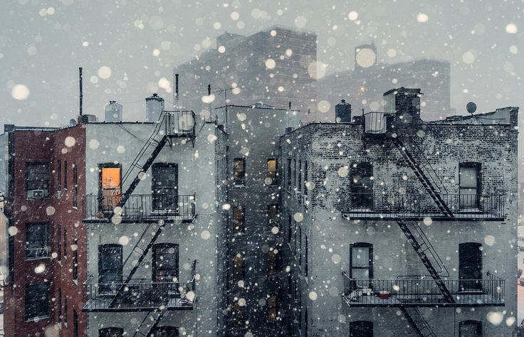 Rear Window view.. Paul Mcgeiver