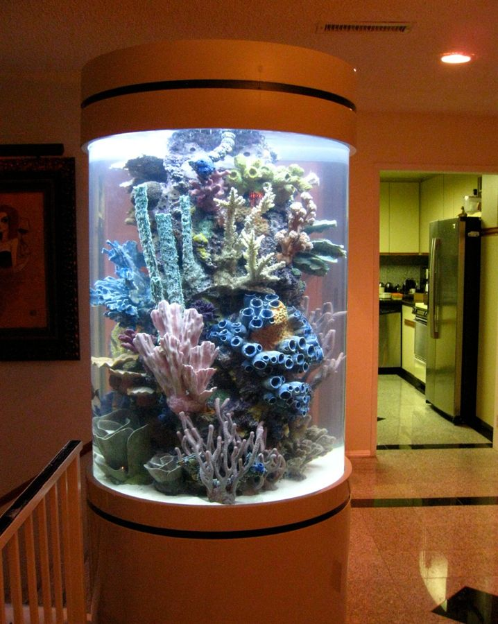 High Quality Acrylic Tank Manufacturing Of Las Vegas, Nevada | Home Of The Hit TV Show  TANKED Images