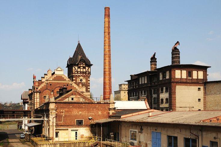 Dreher�s brewery, Zatec, Saaz
