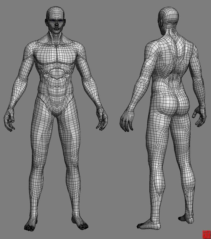 Nude Male Anatomy Study (NUDITY) [Archive] - Blender Artists Community