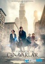 Fantastik Canavarlar Nelerdir, Nerede Bulunurlar? (2016) Türkçe Dublaj ve Altyazılı izlemek için tıkla:  http://www.filmbilir.net/fantastik-canavarlar-nelerdir-nerede-bulunurlar-2016-turkce-dublaj-ve-altyazili-izle.html   Vizyon Tarihi: 2016 Ülke: Abd JK Rowling'in aynı isimli fantastik ansiklopedik kitabına dayanan Fantastik Canavarlar Nelerdir, Nerede Bulunurlar? filmi fantastik yaratıklar hakkında bir kitap yazan bir yazarın gezi notları olarak karşımıza çıkıyor.