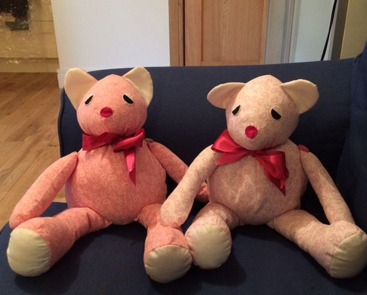 Pink twin teddies