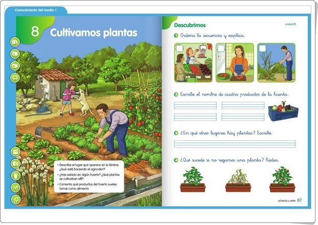 """Unidad 6 de Ciencias de la Naturaleza de 1º de Primaria: """"Cómo son las plantas"""""""