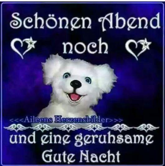 Schönen Abend Noch Und Später Eine Gute #GuteNacht #GutenAbend #SchönenAbend