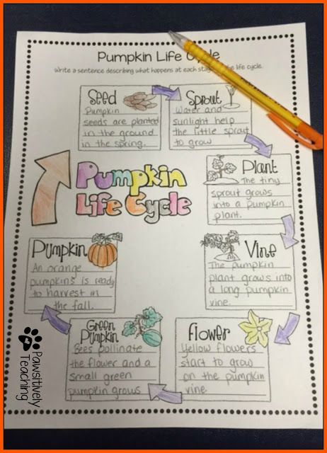 FREEBIE: Flipping for Fall Mentor Texts: Little Boo