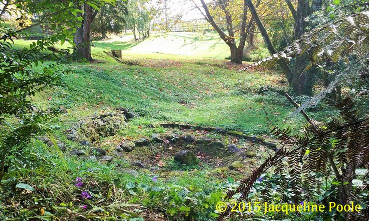 Old Terraced Garden in Two Ponga Park