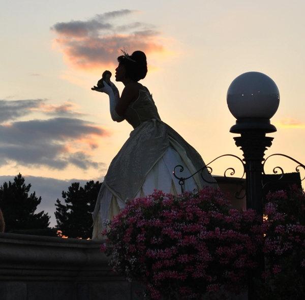 Beautiful Chang E 3: Princess And The Frog