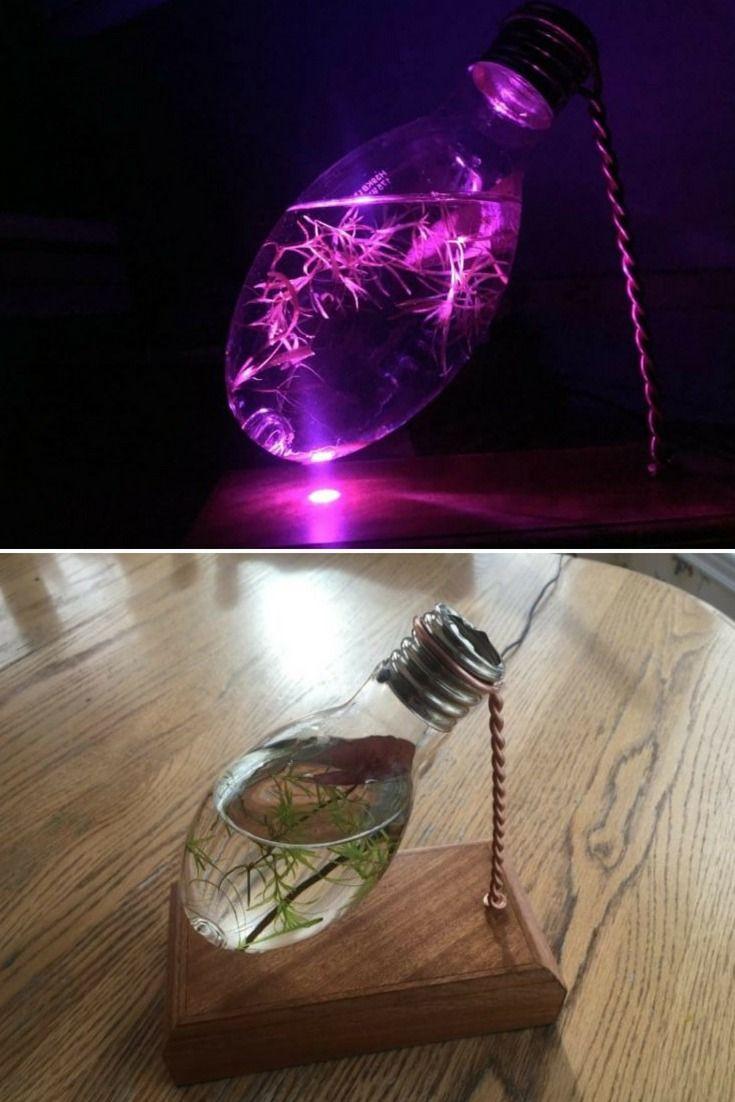 Light Bulb Aquarium Night Light Table Lamp Light Bulb Aquarium