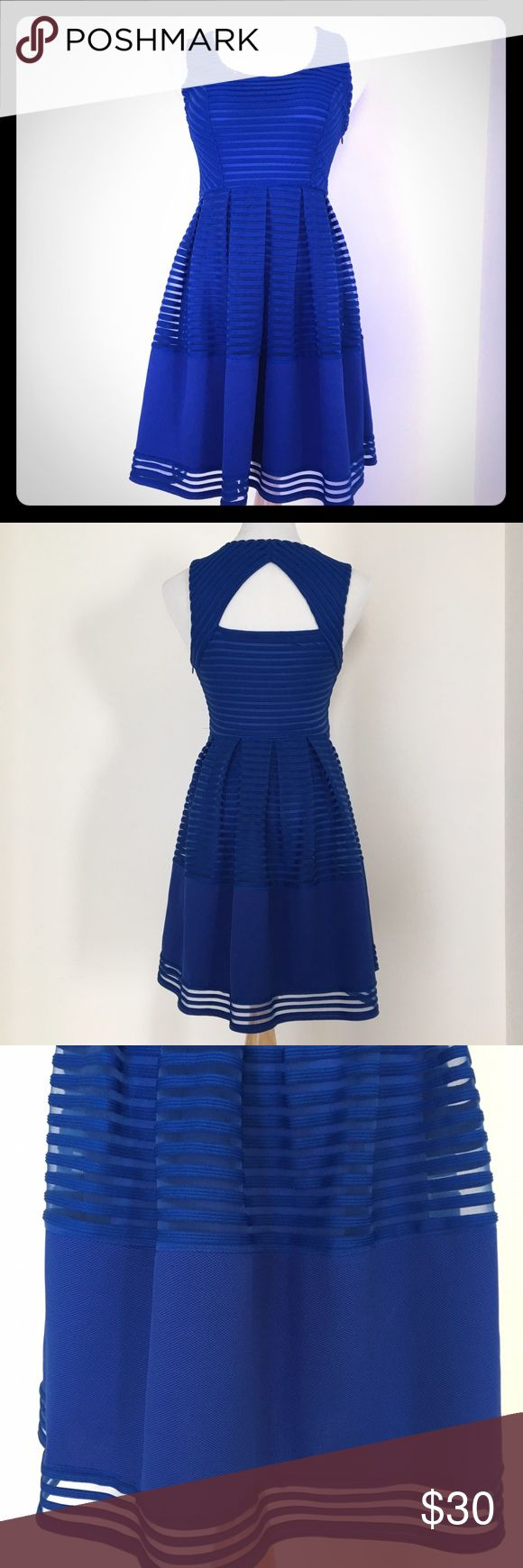 Ya Los Angeles cobalt dress ECU - worn twice!  Super cute to dress up or down! Throw on a statement necklace & heels for a night out, or just some sandals for a day out! Ya Los Angeles Dresses