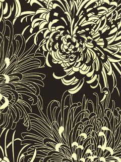 Chrysanthemum Wallpaper l American Blinds.com l Graphic Mod Mum Black and White