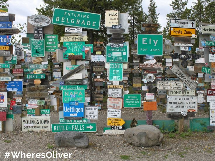 In 1942, the US Army of Engineers put up the first signs on these forest posts near Watson Lake. They pointed the way to camps and surrounding communities and some reminded them of their faraway homes. Nowadays, the Sign Post Forest has over 72,000 signs. Oliver would like to add his own impression. Find out more at: http://bit.ly/2owkjKD