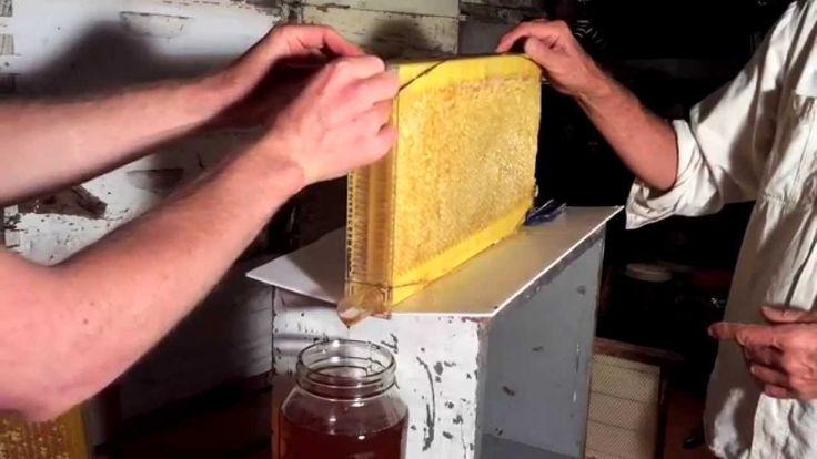 Как устроена рамка с механическими сотами.  Улей с вытекающим медом
