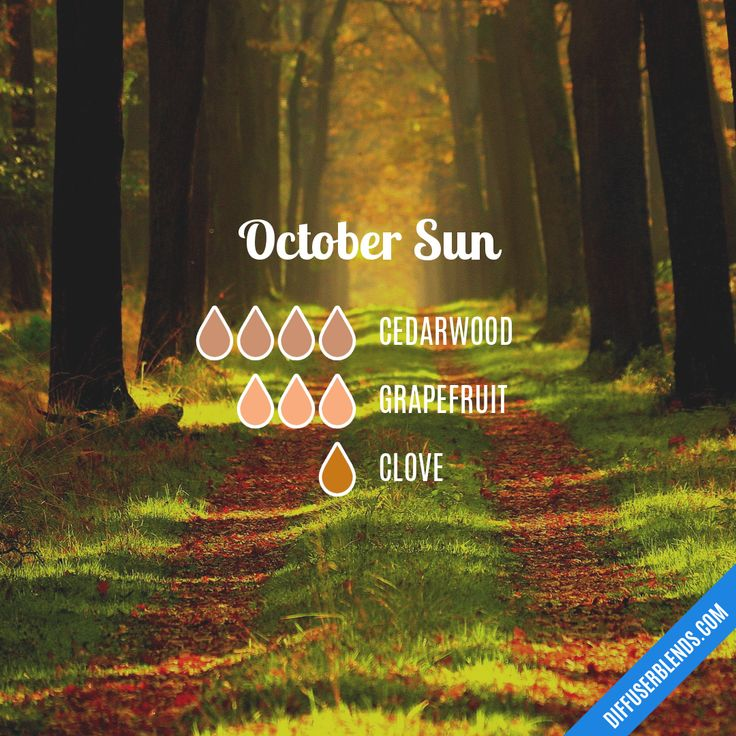 October Sun — Essential Oil Diffuser Blend