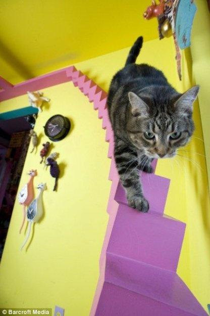Escher kitteh! Cat room ideas !