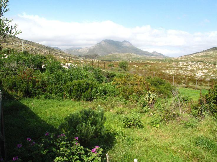 The nature reserve  www.scarboroughproperty.co.za