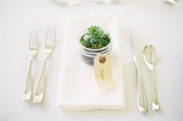 Succulent wedding favor | photography by http://claryphoto.com/