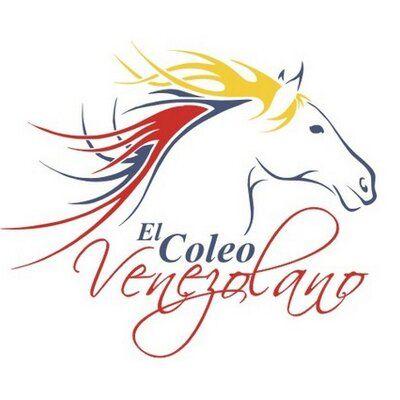 #rostroscaballos #horse #aerografia #oneidajimenez #oneidaarteenaerografia #instagram #franelas #tshirt #venezuela #coleo