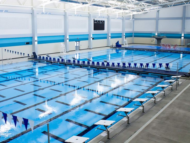 22 best competition training pools images on pinterest for Swimming pool estimate