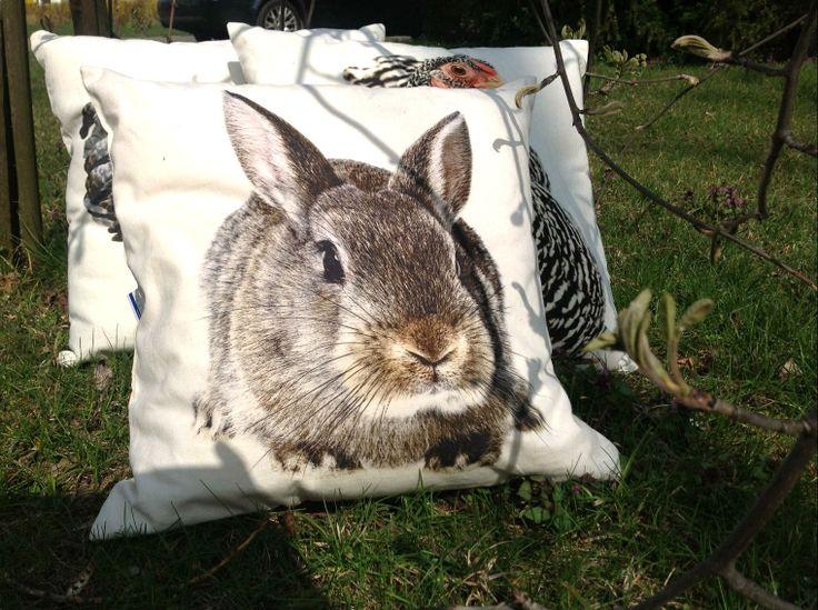 Wiosenne poduszki BBHome!