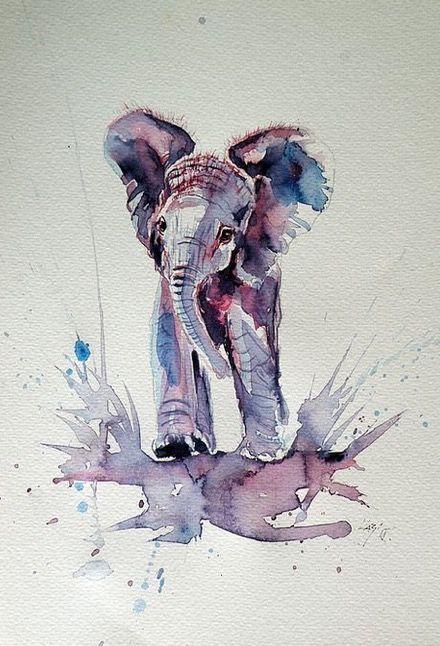 Kovacs Anna Brigitta    WATERCOLOR   Baby Elephant