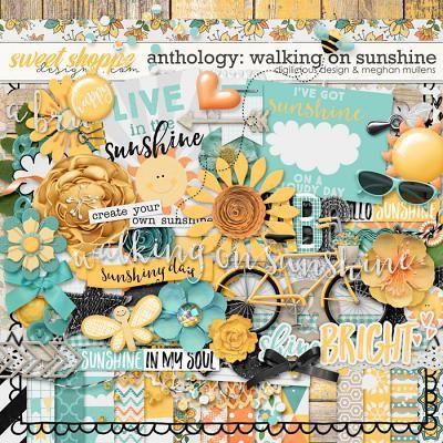 Anthology: Walking On Sunshine