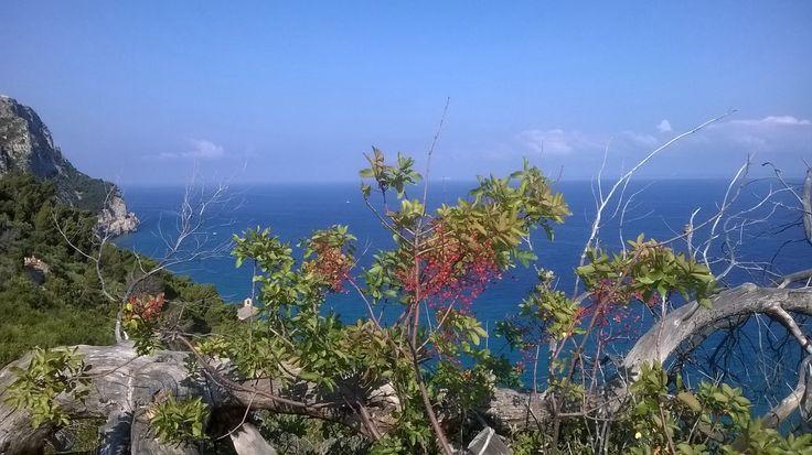 Liguria - panorama sul mare
