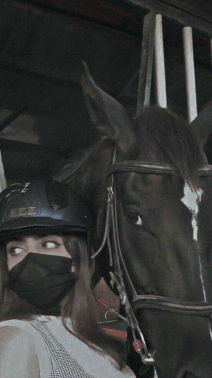 لست رائ عۿ ولك ني حقيقيۿ 𝙸 𝙼 𝙽𝙾𝚃 𝙶𝚁𝙴𝙰𝚃 𝙱𝚄𝚃 𝚁𝙴𝙰𝙻 Horse Girl Photography Cool Girl Pictures Horse Girl