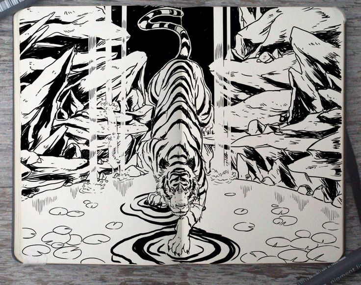 This isn't my art it's buy this guy on diviant art and this guys name is 365 days of doodling this person does some really cool art and if you want to see more just go there. Tiger on water