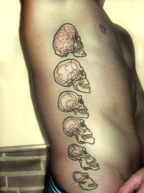 human evolution tattoos - Google Search