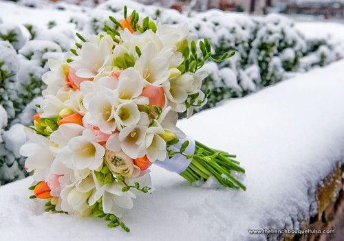 Snowy Bridal Bouquet of White Freesia, Coral Tulips, and White Ranunculus