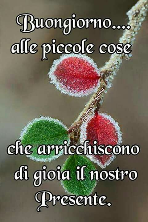 330 best images about buon giorno on pinterest learning for Top immagini buongiorno