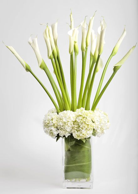 White calla lilies and white hydrangeas. Pure Elegance Floral Arrangements - Simple, Radiant Designs - San ...