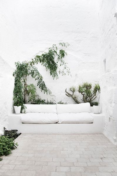 white beauty green outside space
