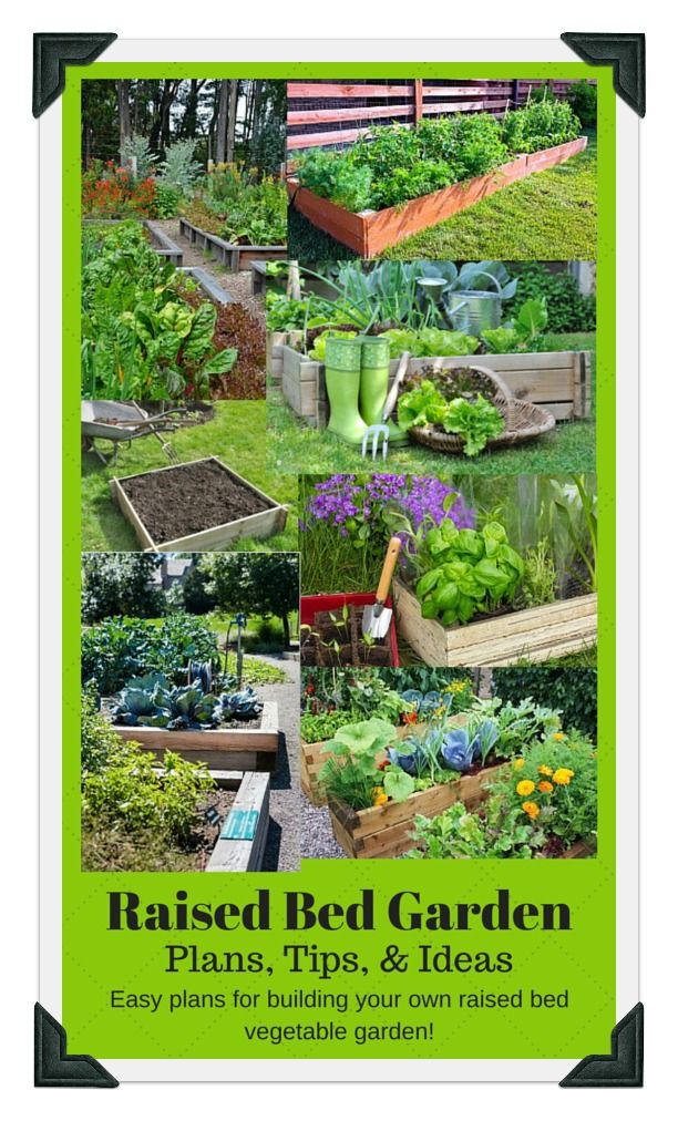 Plans And Ideas For DIY Raised Bed Vegetable Gardens. Use