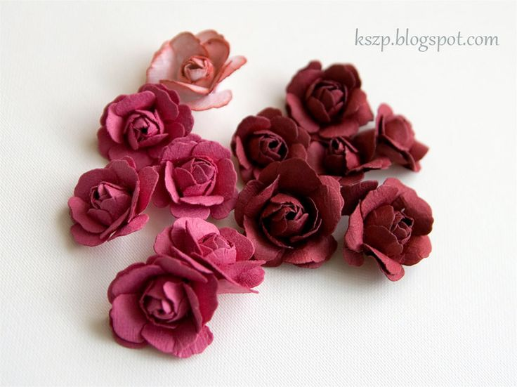 Klaudia / KSZP: Rosas clásico - CURSO