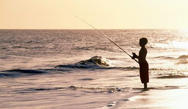 17 best images about ocracoke island on pinterest for Nc fishing laws