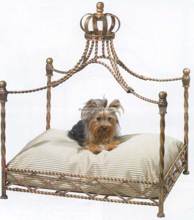 Amazon.com : Luxury Iron Royal GOLD CROWN Dog / Pet Bed Jeweled Antique Victorian : Princess Dog Bed : Pet Supplies