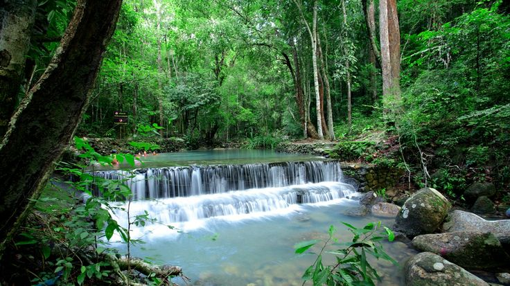Phaeng Waterfall - Koh Phangan, Thailand. Safari Boat Tours can take you here! Book a day tour of Koh Phangan and see this among many other stunning spots.