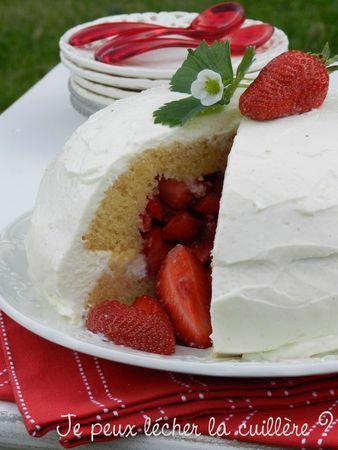 Gateau pinata fraise vanille - Je peux lécher la cuillère?