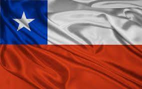 Image result for santiago de chile parque ohiggins