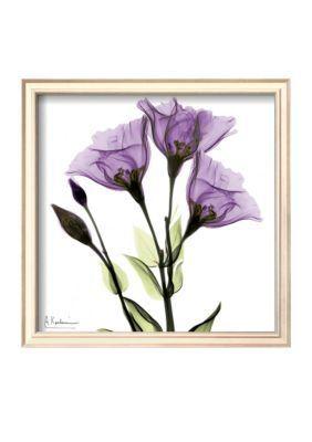Art.com  Gentian in Purple Framed Art Print - Online Only