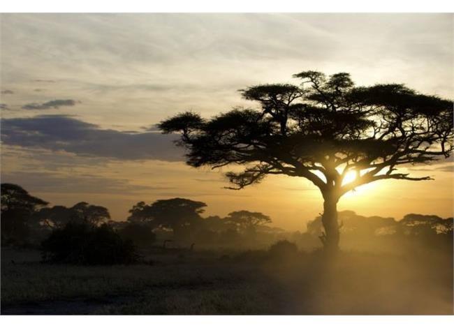 Τόσο μακριά, τόσο κοντά Δεν περίμενα ποτέ ότι η ευτυχία μου θα κρυβόταν σε μια χώρα της υποσαχάριας Αφρικής. Από τη Μαίρη Κουρκουμέλη, όπως τα διηγήθηκε στη Χριστίνα Μπίθα