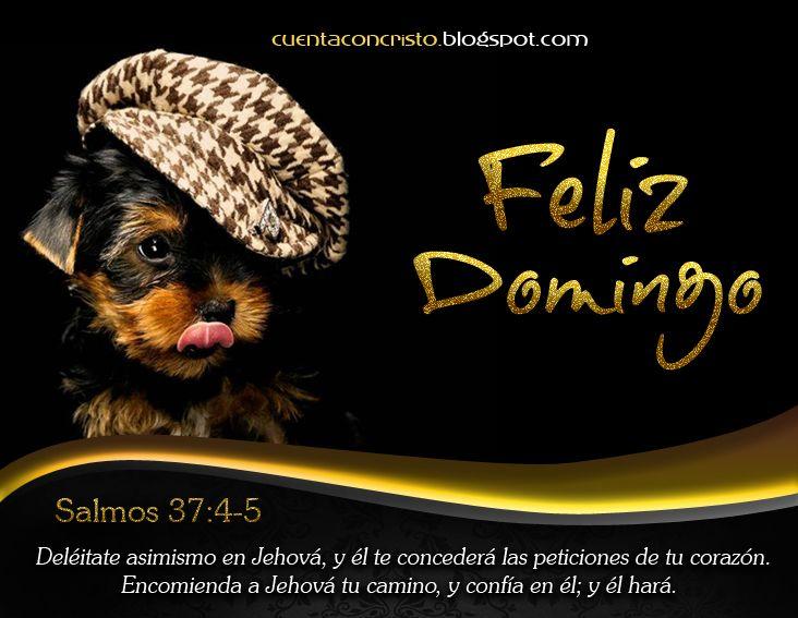 Feliz Domingo, Dios te Bendiga   Nuestro Blog Cristiano: http://bit.ly/soldadodecristo