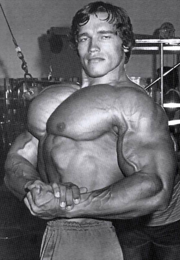 Arnold Schwarzenegger, Austria (30 July 1947) > USA ...