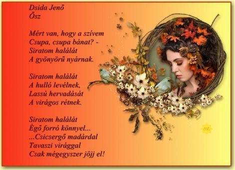 wonderfulphotos.hupont.hu felhasznalok_uj 2 2 224200 kepfeltoltes dsida_j._osz.jpg