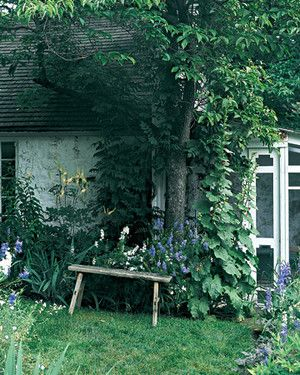 Create a Place to Relax   Martha Stewart Living - Hollyhocks reach for the roof of landscape designer Judy Tomkins's home. The screened porch is surrounded by beds of blue and white delphiniums mixed with white cimicifuga. A rustic bench makes an ideal resting spot.