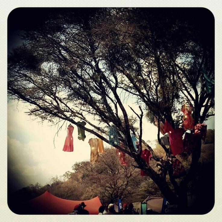 Oppikoppi festival...creative